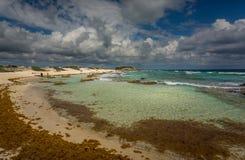 Panorama van het Chen Rio-strand, in Cozumel, Mexico stock foto