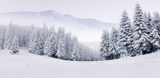 Panorama van het mistige de winterlandschap