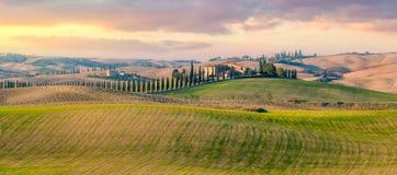 Panorama van het plattelandslandschap van Toscanië royalty-vrije stock afbeeldingen