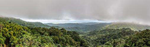 Panorama van het regenwoud van Gr Yunque Royalty-vrije Stock Foto
