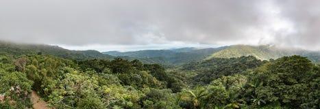 Panorama van het regenwoud van Gr Yunque Royalty-vrije Stock Foto's