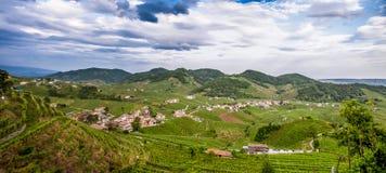 Panorama van het Valdobbiadene-wijngebied stock foto