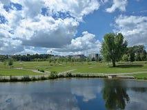Panorama van Hoehenpark Killesberg in Stuttgart royalty-vrije stock foto's