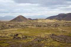 Panorama van Ijslandse bergen Stock Foto