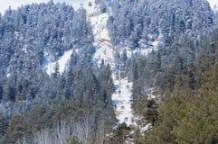 Panorama van kabelwagen bij skitoevlucht Arkhyz Stock Afbeelding
