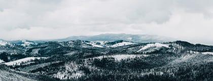 Panorama van Karpatische die Bergen in sneeuw worden behandeld stock fotografie