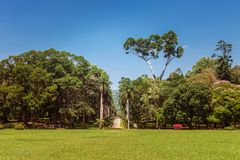 Panorama van Koninklijke Botanische Koning Gardens, Peradeniya, Sri Lanka Royalty-vrije Stock Foto's