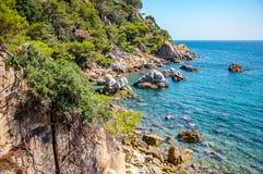 Panorama van kust met rotsklip Royalty-vrije Stock Afbeeldingen