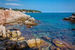 Panorama van kust met rotsklip Stock Afbeeldingen