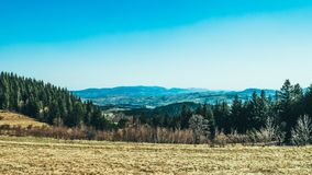Panorama van lage bergen en bossen stock foto's