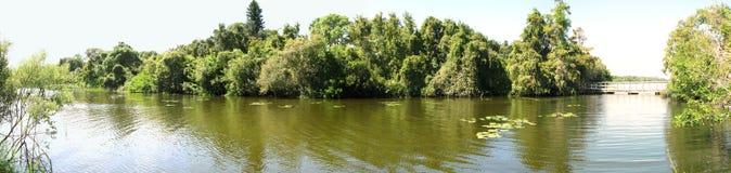 Panorama van meer Sawgrass Royalty-vrije Stock Foto's