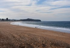 Panorama van Narrabeen-strand op een bewolkte dag royalty-vrije stock fotografie
