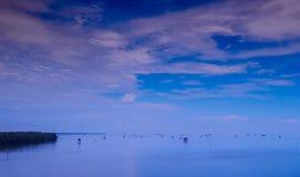 Panorama van oesterlandbouwbedrijf, de horizon waar de hemel het overzees ontmoet Stock Fotografie