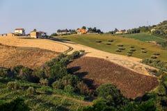 Panorama van olijfgaarden en landbouwbedrijven op rollende heuvels van Abruzzo royalty-vrije stock foto