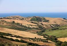 Panorama van olijfgaarden en landbouwbedrijven op rollende heuvels van Abruzzo en op de achtergrond het Adriatische Overzees royalty-vrije stock foto