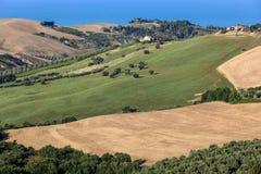 Panorama van olijfgaarden en landbouwbedrijven op rollende heuvels van Abruzzo en op de achtergrond het Adriatische Overzees royalty-vrije stock fotografie