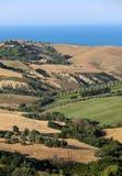 Panorama van olijfgaarden en landbouwbedrijven op rollende heuvels van Abruzzo en op de achtergrond het Adriatische Overzees royalty-vrije stock foto's