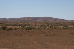 Panorama van paddock met windmolen, watertanks en schapen royalty-vrije stock fotografie