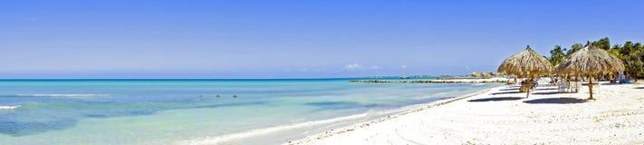 Panorama van Palm Beach op Aruba Stock Fotografie