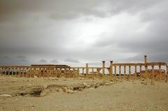 Panorama van Palmyra Royalty-vrije Stock Afbeeldingen