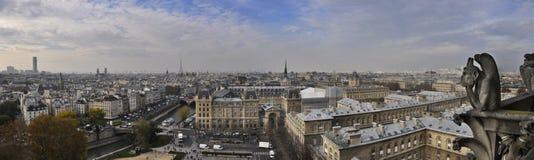 Panorama van Parijs van Notre Dame royalty-vrije stock afbeelding