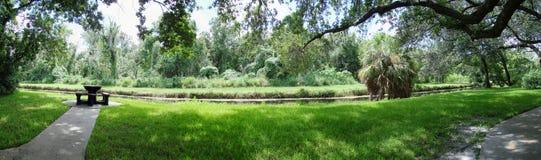 Panorama van park en meer Stock Afbeeldingen