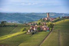 Panorama van Piemonte-wijngaarden en Barbaresco-stad Stock Foto