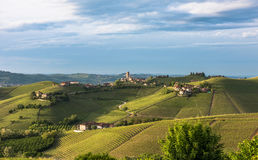 Panorama van Piemonte-wijngaarden en Barbaresco-stad Stock Fotografie
