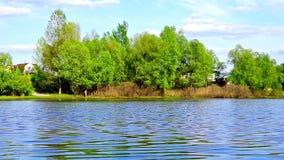 Panorama van rivier en bos op bewolkte hemel stock video
