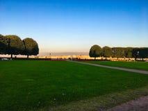 Panorama van ronde bomen op een rivier bij zonsondergang Stock Foto's
