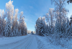 Panorama van sneeuwhout, weg, Rusland, Ural Stock Foto