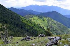 Panorama van Sveshtnik-Kandelaarpiek stock fotografie