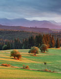 Panorama van Tatra-Bergen in de lentetijd, Polen Stock Foto's