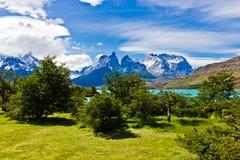 Panorama van Torres del Paine in Chili stock afbeeldingen