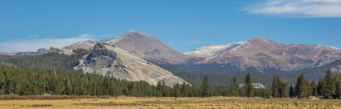 Panorama van Tuolumne-Weiden in het Nationale Park van Yosemite stock afbeeldingen