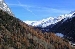 Panorama van Val Ferret in Valle D ` aosta Royalty-vrije Stock Foto's
