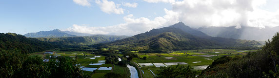 Panorama van Vallei Hanalei in Kauai Royalty-vrije Stock Fotografie