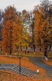 Panorama van Vladimir-stad, Rusland De aard van de herfst Lange schaduwen en blauwe hemel royalty-vrije stock afbeeldingen