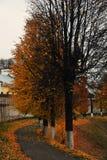 Panorama van Vladimir-stad, Rusland De aard van de herfst Lange schaduwen en blauwe hemel stock afbeeldingen