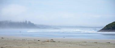 Panorama van vreedzame kust met grote oceaangolven en mistige horizon, stock afbeelding