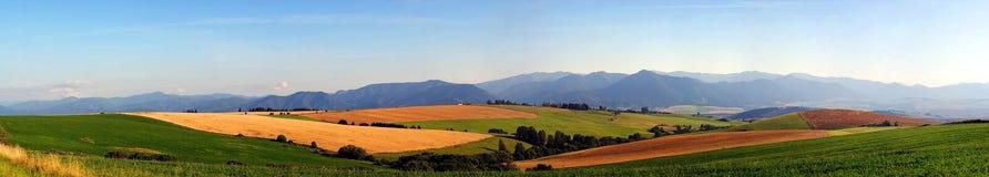 Panorama van weiden en gebieden Royalty-vrije Stock Afbeelding