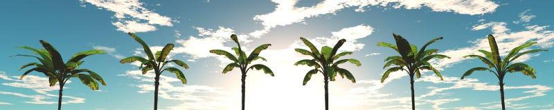 Panorama van zonsondergang op het overzees Eiland Zeegezicht palmen royalty-vrije stock afbeeldingen