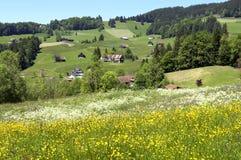 Panorama van Zwitsers bergdorp in Alpen Stock Foto's