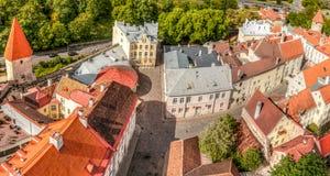 Panorama velho da cidade de Tallinn Fotos de Stock
