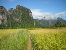 Panorama of verdant hills in South-East Asia. Path through mountains around Vang Vieng, Laos. Hiking through rugged foreign mountains and hills, amid tropical Royalty Free Stock Photos