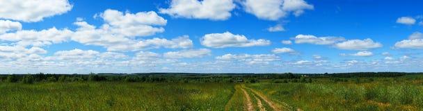 Panorama verde de rolamento do campo fotos de stock royalty free