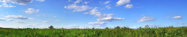 Panorama verde del campo Fotografie Stock