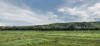 Panorama verde del campo Immagini Stock Libere da Diritti