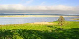 Panorama vert 2 Photos libres de droits