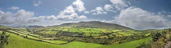 Panorama vert de prés près de Dingle photo stock